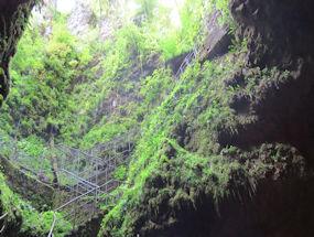 the black cave in green slovenia