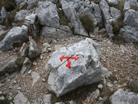 signs in slovenian stone